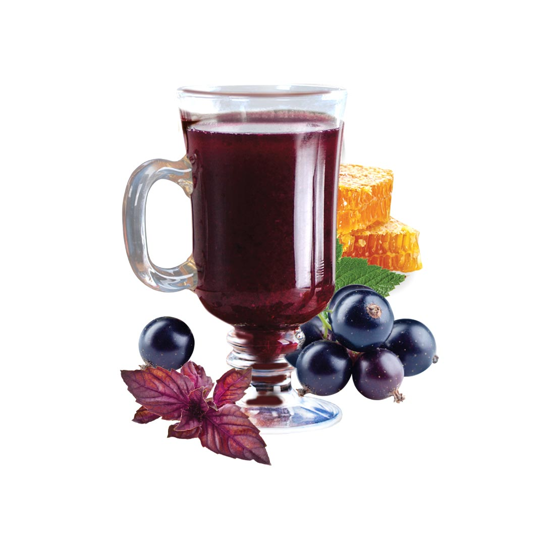 Berry premix Black Currant 450g horeca